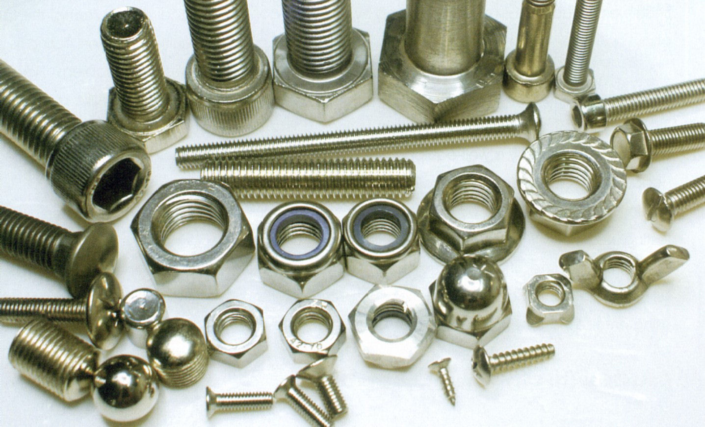 SS Fasteners & Accesories